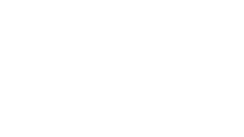 The University of Akron White Logo