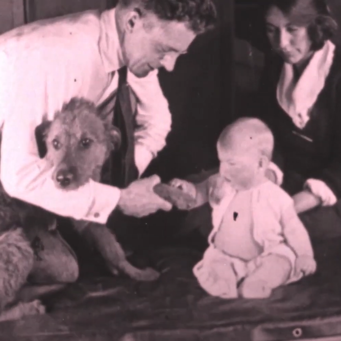 A man and woman introducing a dog to a baby