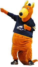 athletics history traditions the university of akron