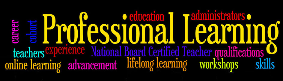 Professional Learning banner wordle