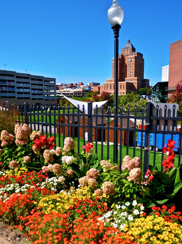 Downtown garden with flowers with city buildings in the background