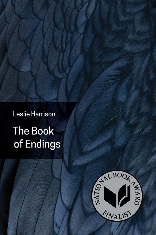 Book-of-Endings-cover-with logo-600