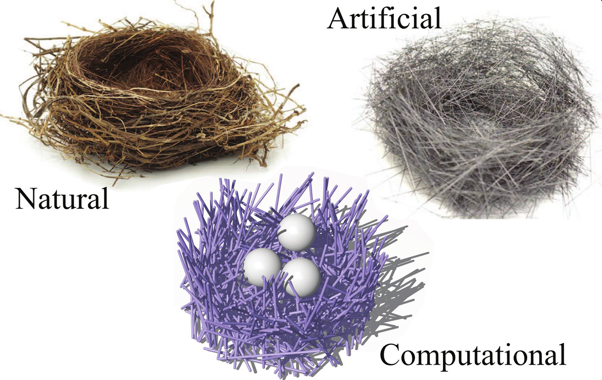 Three-types of-nests