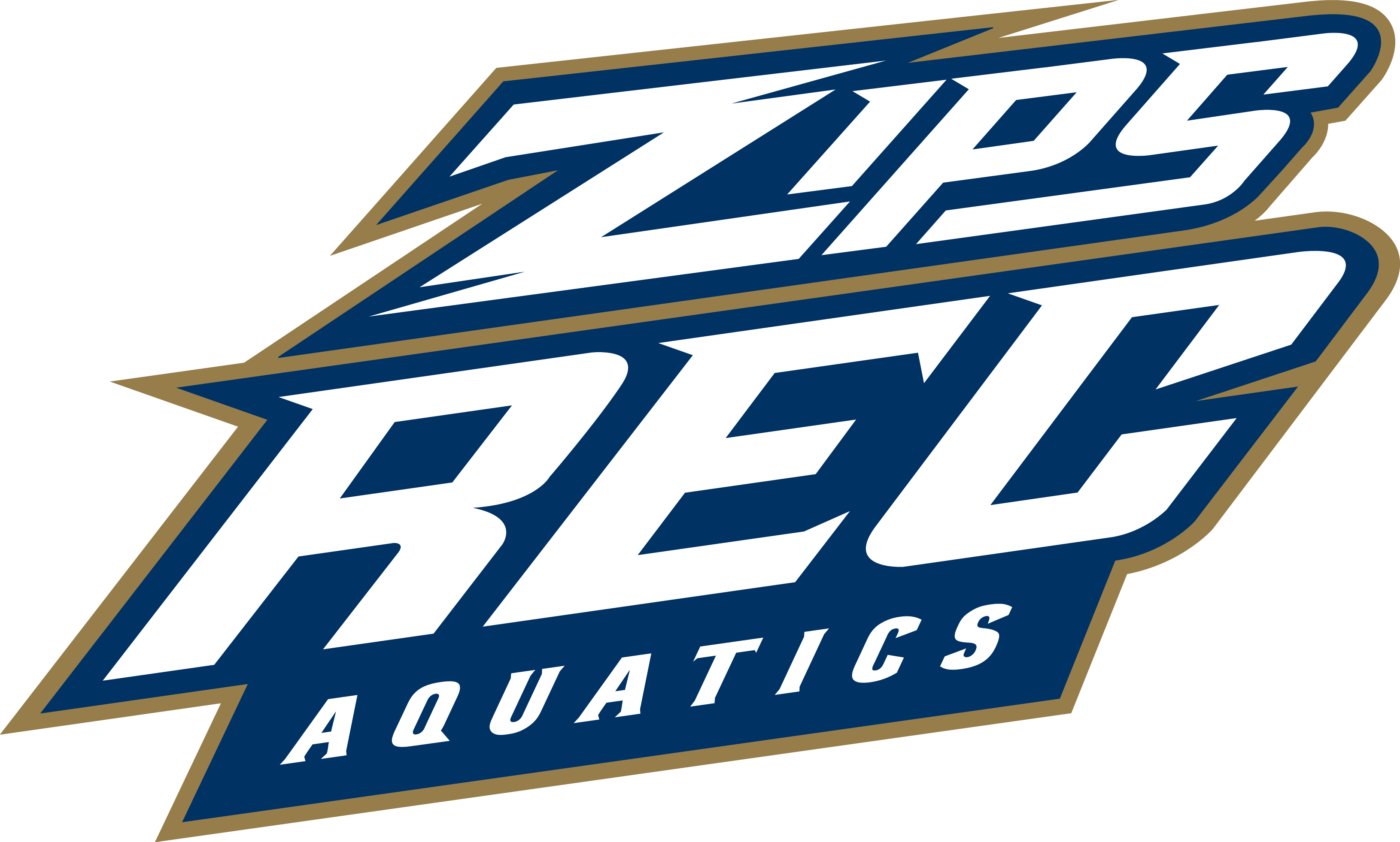 zips rec aquatics - Aquatic Director Jobs