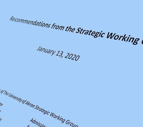 Cover of the Strategic Working Group recommendations
