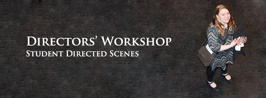 University of Akron Directors' Workshop