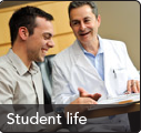 Learn about student life in the Honors College