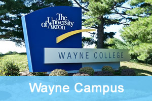 wayne campus activities