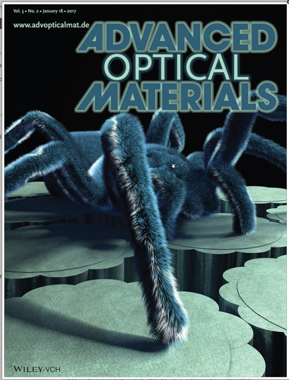 Cover of Advanced Optical Materials